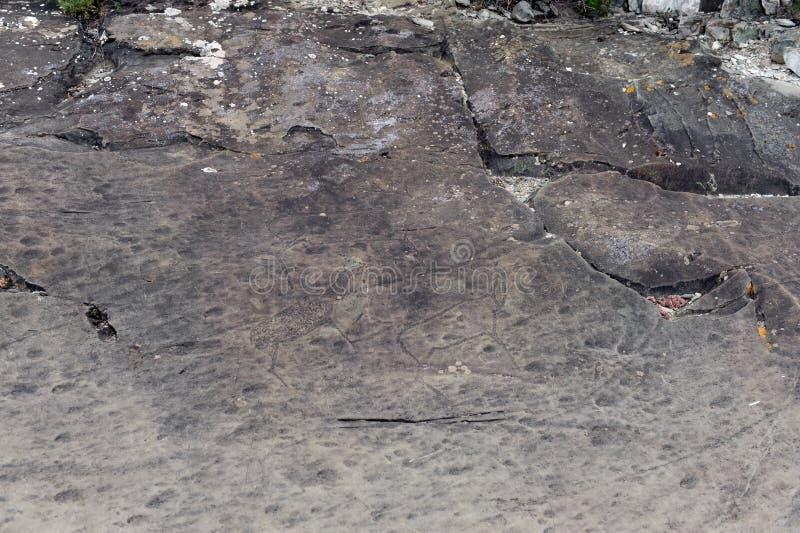 Rock petroglyphs in the tract Kalbak-Tash. ALTAI REPUBLIC, RUSSIA - JUNE 8, 2018: Rock petroglyphs in the tract Kalbak-Tash. Petroglyphs of different historical stock image