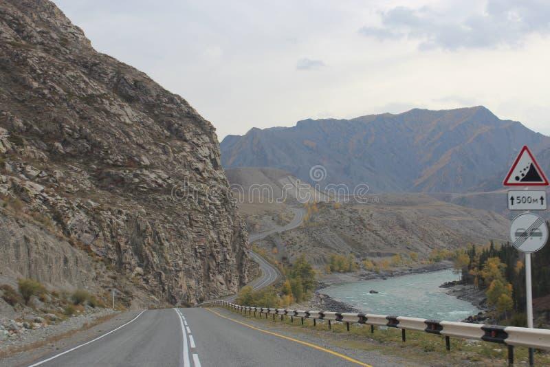 Altai republik royaltyfria bilder