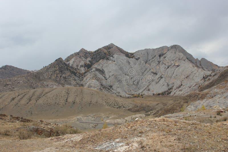 Altai republik royaltyfri fotografi
