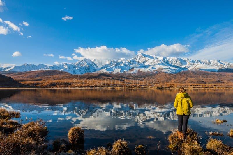 Altai republik Flickan är en turist vid bergsjön mot bakgrunden av snöig maxima och lärktaigaen arkivbild
