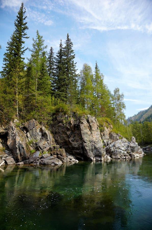 Download Altai river Kumir stock photo. Image of pine, clouds - 32067172