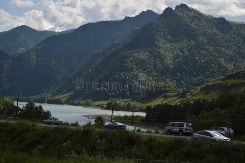 Altai, Siberië, aard, Rusland, hooglanden stock foto