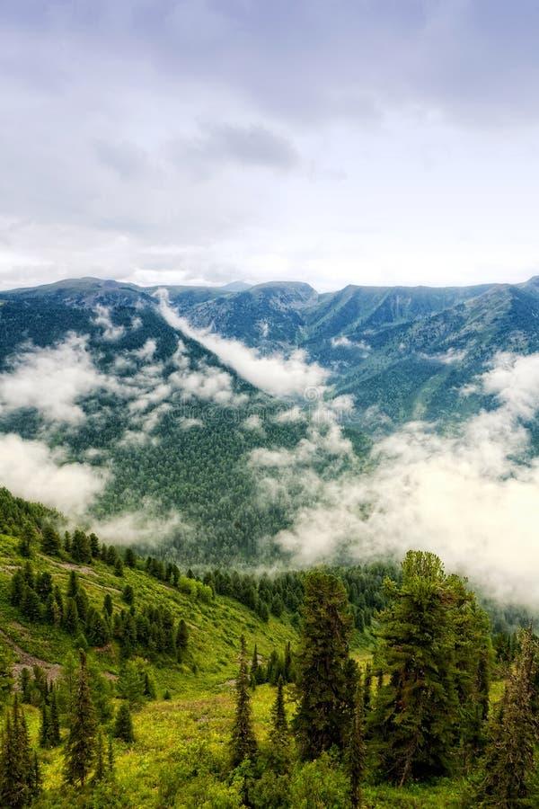 Altai, Siberia royalty free stock photo