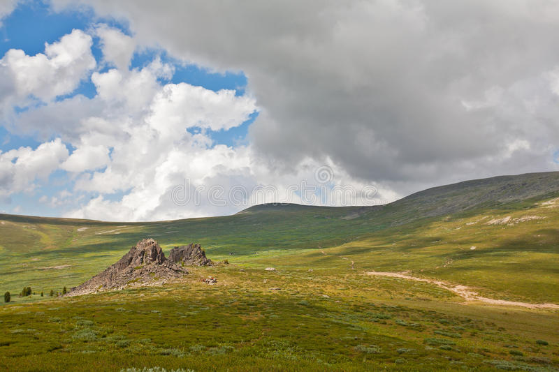 Altai in summer royalty free stock photos