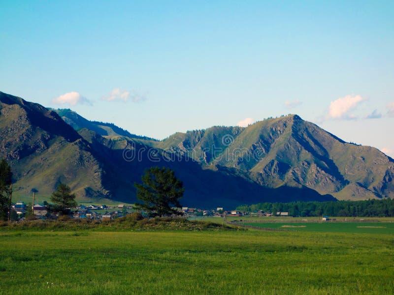 Altaian berg och fält arkivfoto