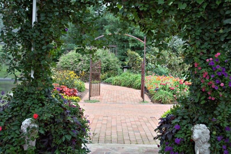 altan piękna zdjęcie royalty free