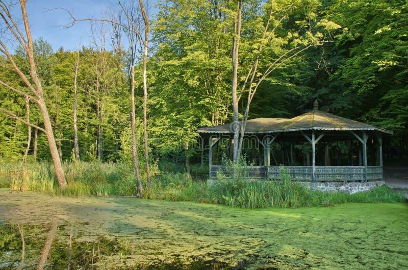 Altana w lesie zdjęcia royalty free