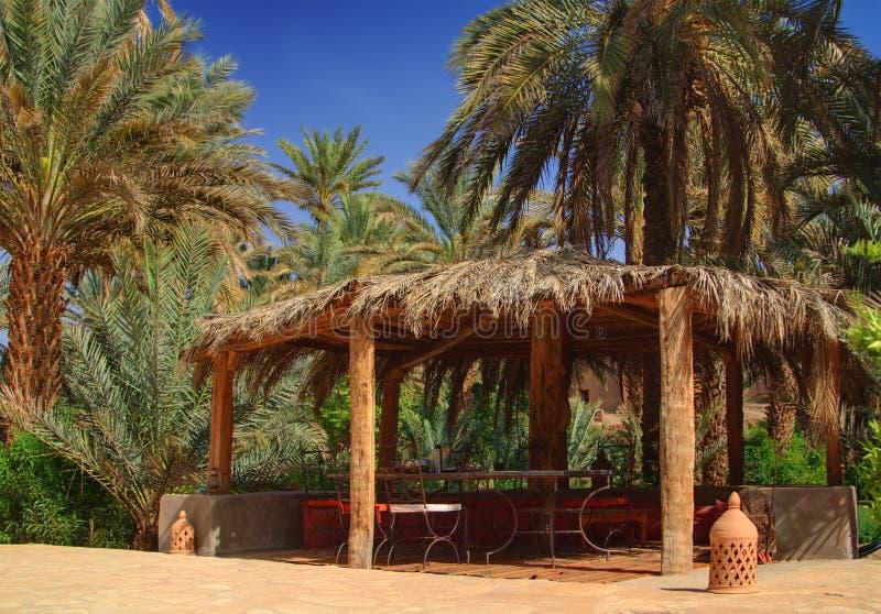 altany Morocco drzewka palmowe zdjęcia royalty free