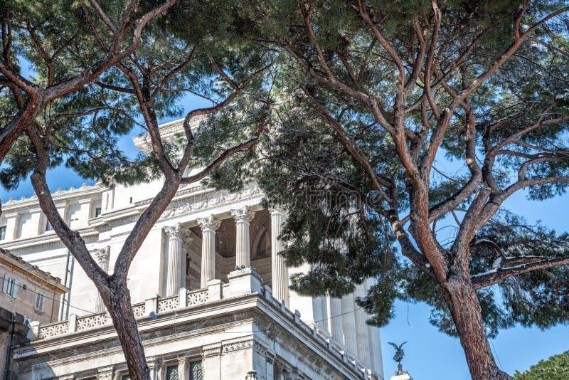 Altare della Patria zadek z drzewami fotografia royalty free