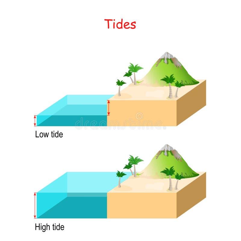 Altas e baixas marés nível ? água ? ilustração do vetor
