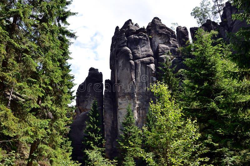 Altas rocas y porción altas de árboles en fotografía del parque nacional fotografía de archivo libre de regalías