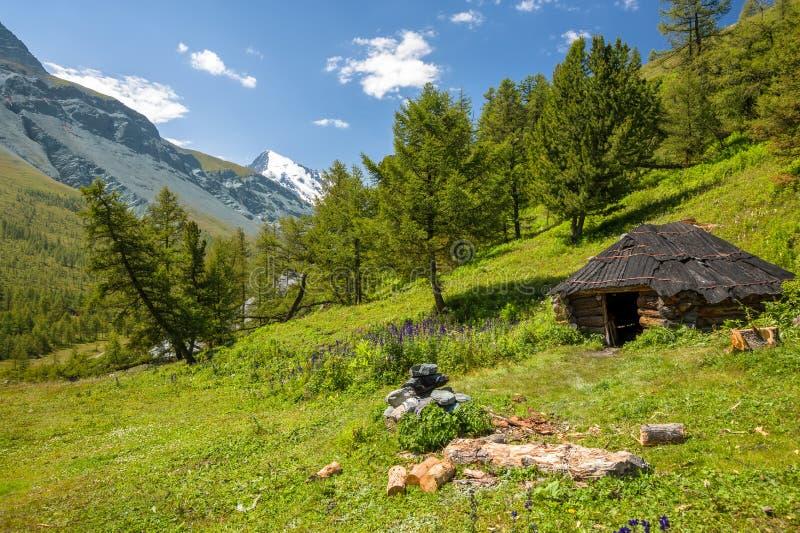 Altay Altai foto de archivo libre de regalías