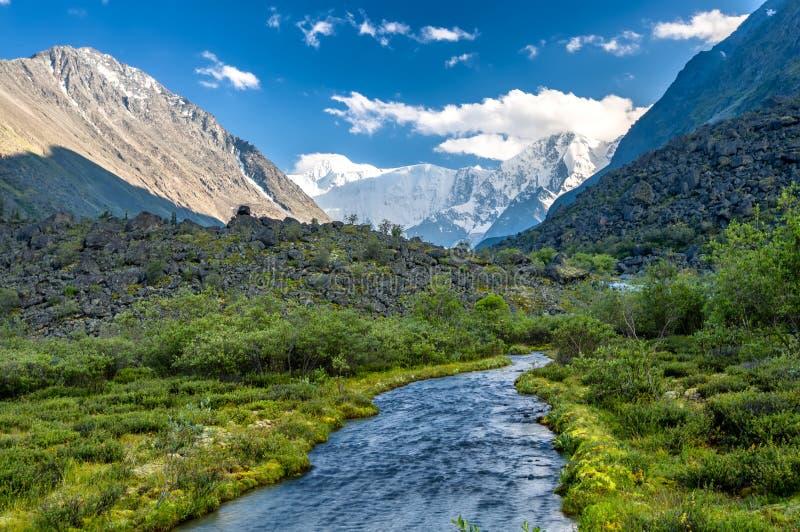 Altay Altai imagen de archivo