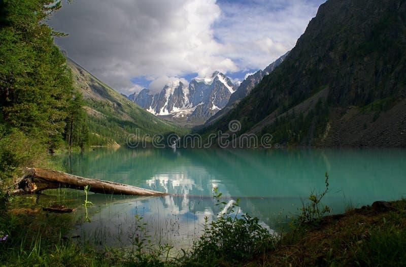 Altay, lagos do shavla, rusland do curso fotografia de stock