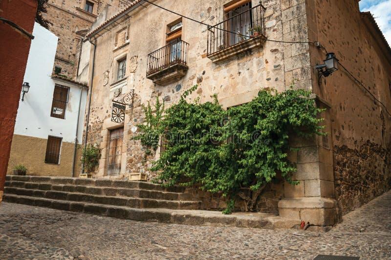 Altbaufassade mit grüner Kriechpflanze, auf Ecke der schmalen Gasse in Caceres stockfotografie
