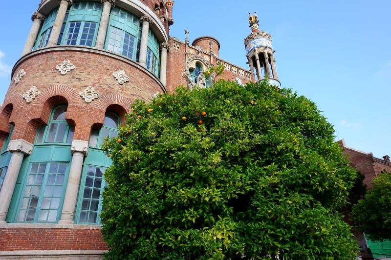 Altbauten und ein Orangenbaum mit Früchten des Gebiets des historischen Krankenhauses Sant Pau in Barcelona lizenzfreie stockfotos