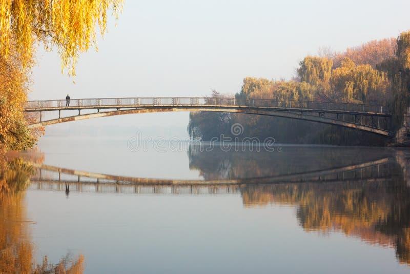 Altbrücke im Stadtpark lizenzfreies stockfoto