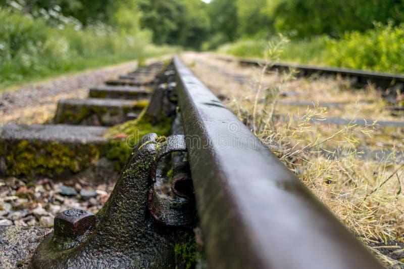 Alte überwucherte veraltete Eisenbahnlinien lizenzfreie stockfotografie