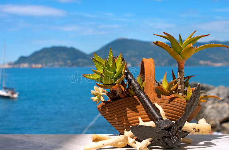Alte Aloe Vera Potted mit Rusty Anchor stockfotografie
