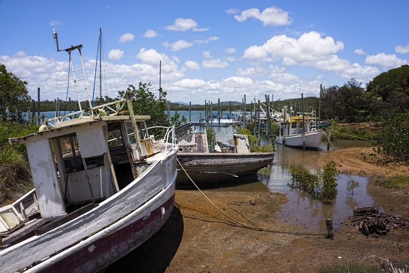 Alte aufgegebene Boote in den Mangroven stockfotografie