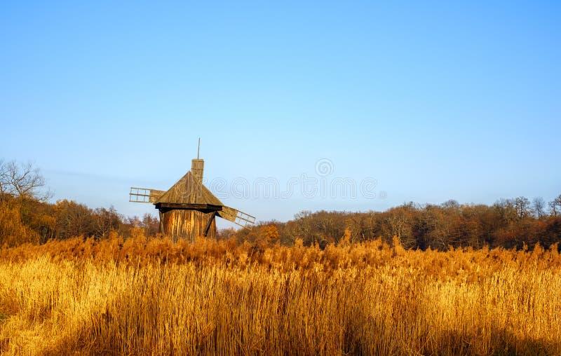 Alte authentische traditionelle Windmühle mit einem Reedfeld und einem klaren Himmel stockfotografie