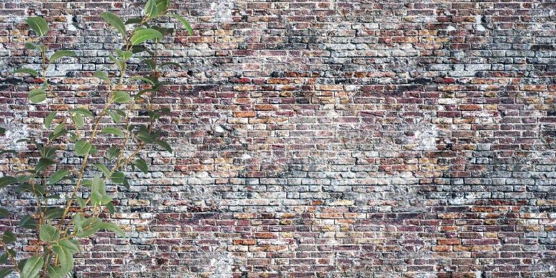 Alte Backsteinmauer mit großer Illustration der Anlagen 3D lizenzfreie abbildung