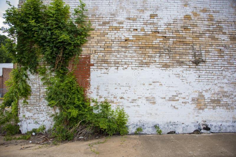 Alte Backsteinmauern lizenzfreies stockbild