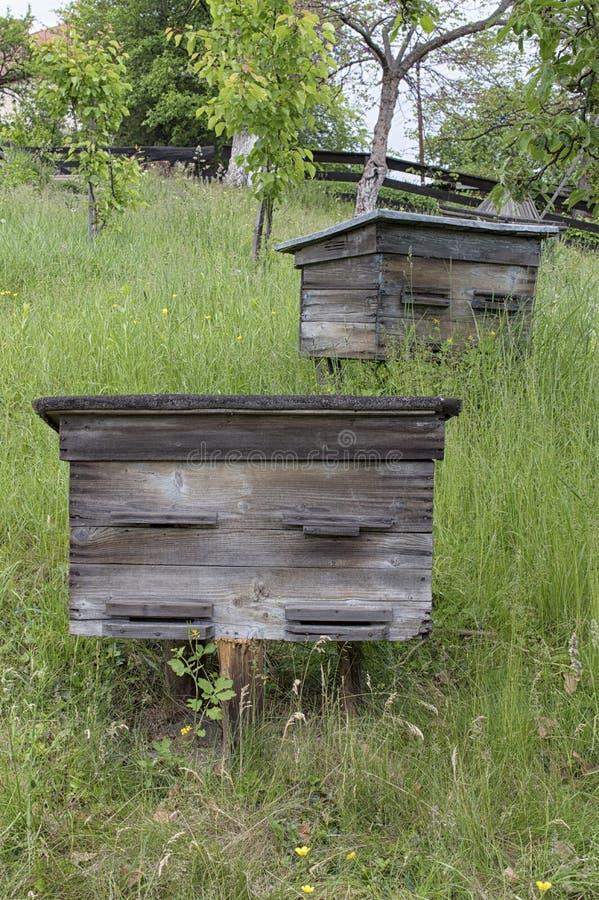 Alte Bienenstöcke auf einer Steigung lizenzfreie stockfotos