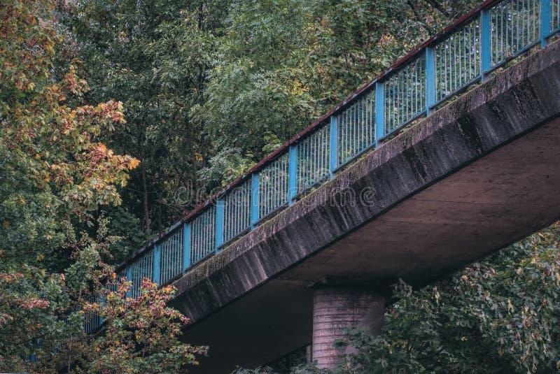 Alte blaue Brücke, die im Wald verschwindet lizenzfreie stockfotos