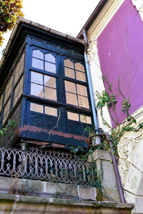 Alte blaue hölzerne Galerie mit Efeu- und Veilchenwand Pontevedra, alte Stadt, Galizien, Spanien lizenzfreie stockfotos