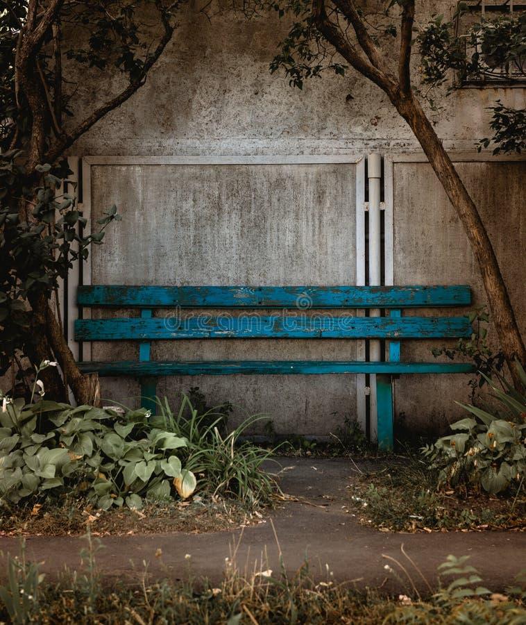 Alte blaue Holzbank auf der Betonmauer gestaltet mit Bäumen stockbild