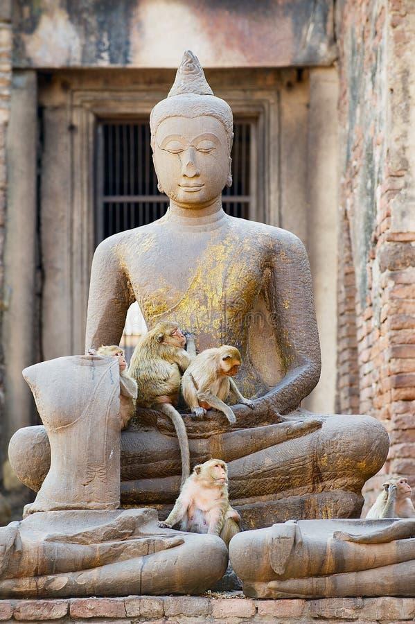 Alte Buddha-Statue an den Ruinen von Prang Sam Yot, ursprünglich ein hindischer Schrein, umgewandelt bis ein buddhistisches in Lo lizenzfreies stockfoto