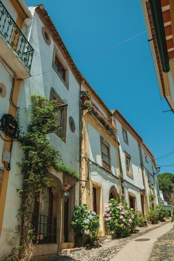 Alte bunte Häuser mit geblühten Sträuchen in der Gasse auf Steigung stockbild