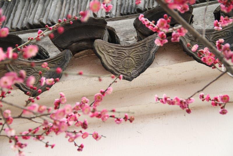 Alte Dachgesimse Fliese und Pfirsich-Blüte stockfoto