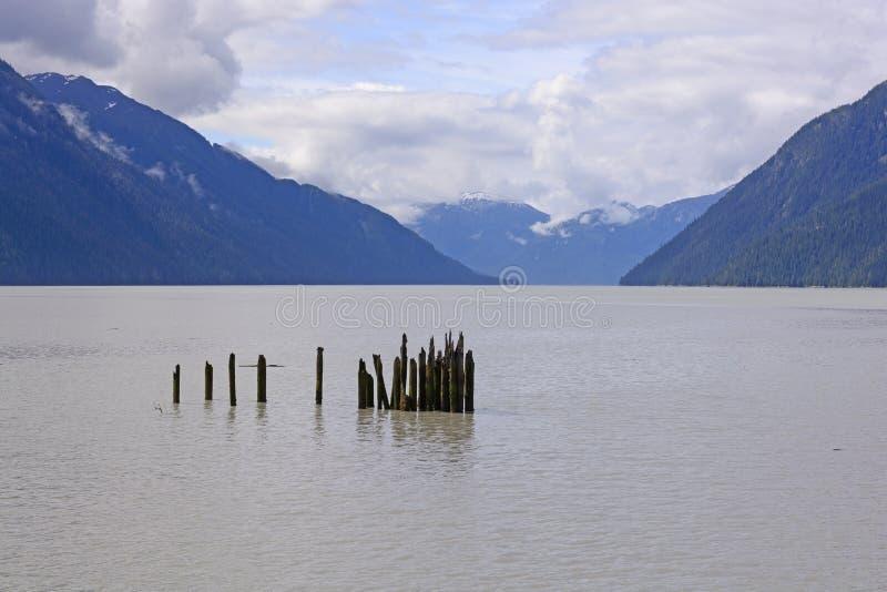 Alte Dock-Beiträge in einer Ozean-Bucht lizenzfreie stockfotografie