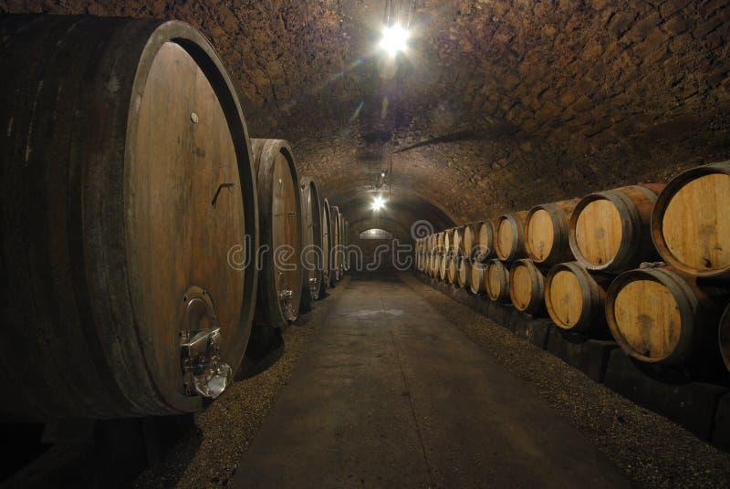 Alte Fässer in einer Weinhöhle stockbild