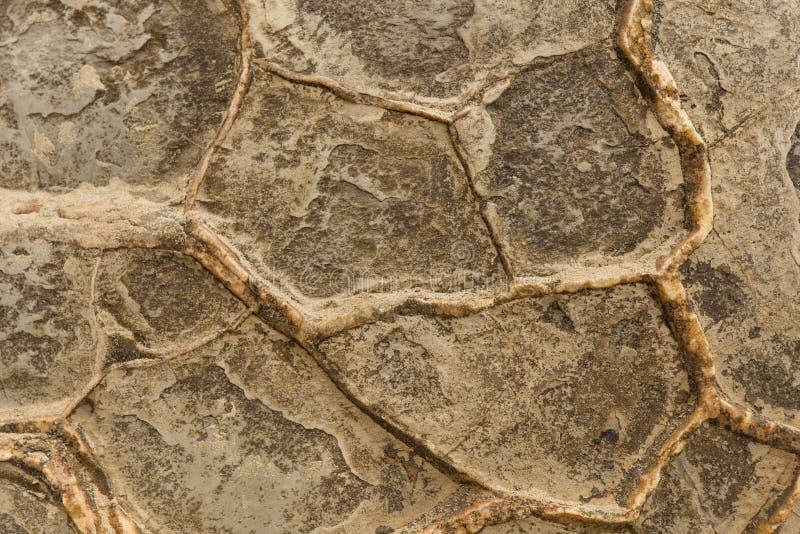 Alte Felsen Moeraki-Beschaffenheit lizenzfreies stockbild