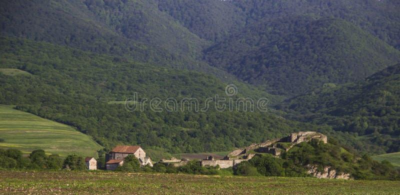 Alte Festung und Kirche Dmanisi, die mit Wald umgeben wurde, bedeckten Berge lizenzfreie stockfotos