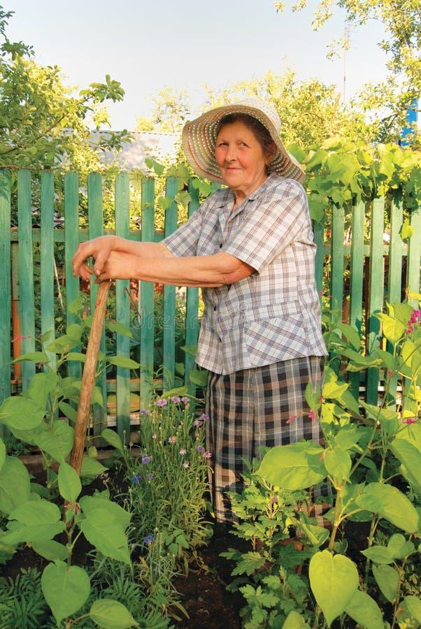 Alte Frau, die im Garten arbeitet lizenzfreie stockbilder