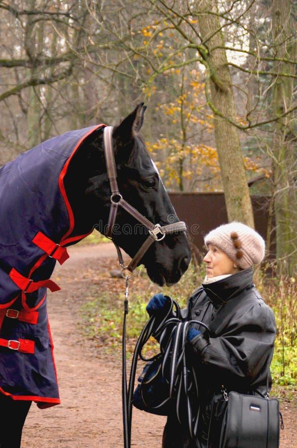 Alte Frau, die mit Pferd spricht lizenzfreie stockfotografie