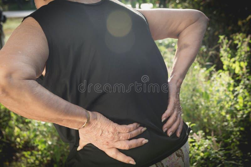 Alte Frau, die unter Rückenschmerzen, Rückenmarksverletzung und Muskel leidet stockbilder