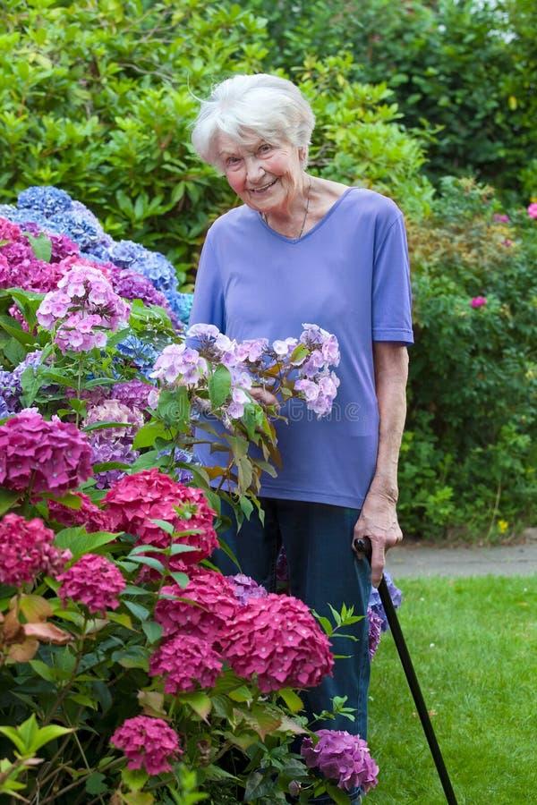 Alte Frau mit Cane Posing Beside Pretty Flowers stockfotografie