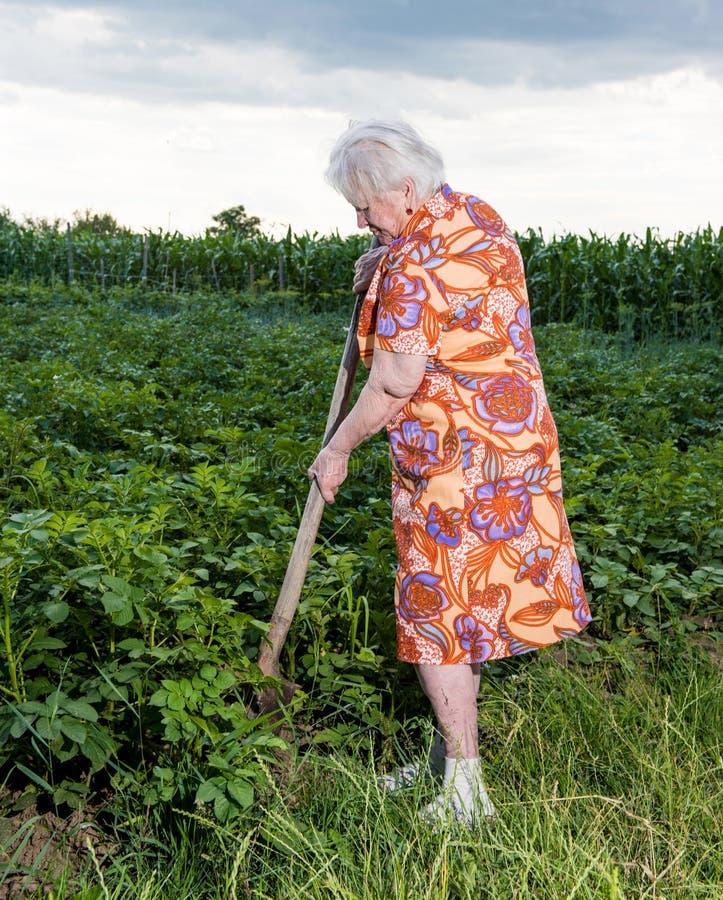 Alte Frau mit einer Schaufel stockbild