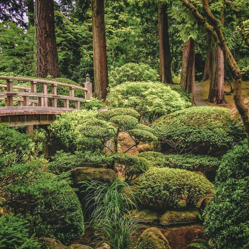 Alte Fußbrücke im japanischen Garten Portlands stockfotografie