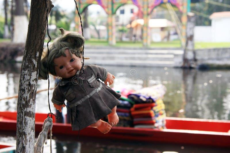 Alte gespenstische Puppe, die in einem Baum in Mexiko City hängt lizenzfreie stockfotos