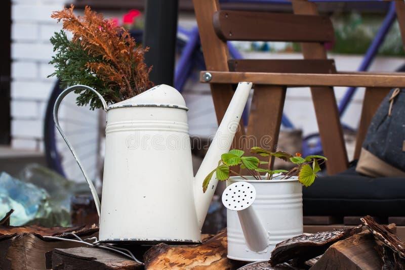 Alte Gießkannen im Garten im rustikal-ähnlichen holt Cosiness und Romance - des umgearbeiteten Dorfs stockfoto