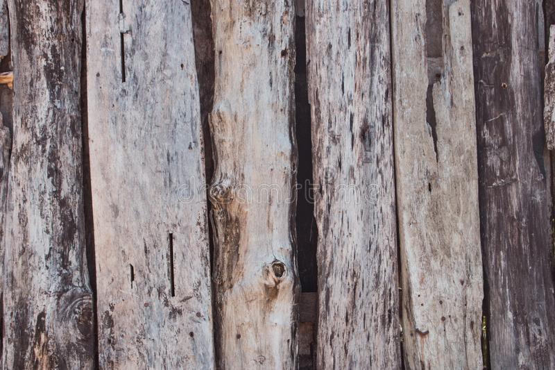 Alte hölzerne Beschaffenheit Schmutzeichenplanken Verwitterte hölzerne Vorstände Landwirtschaftlicher Zaun Hartholzhintergrund lizenzfreies stockbild