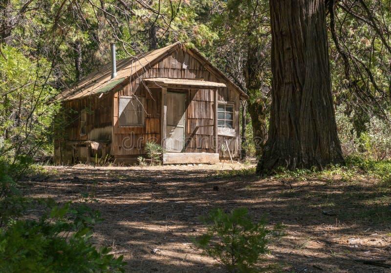 Alte Kabine im Wald stockfoto