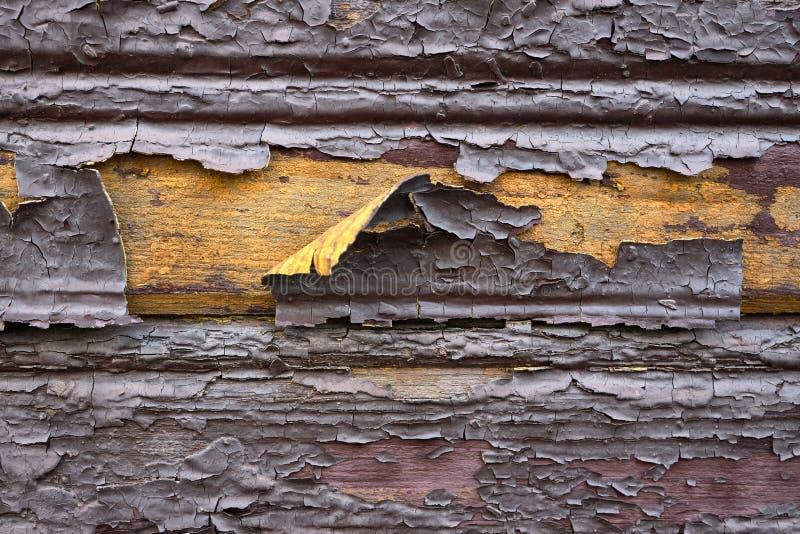 Alte lackierte, verdünnte, flockige, schuppige Holzlackierung, braune Schokolade, gelb innen als Designhintergrund oder stockfotos