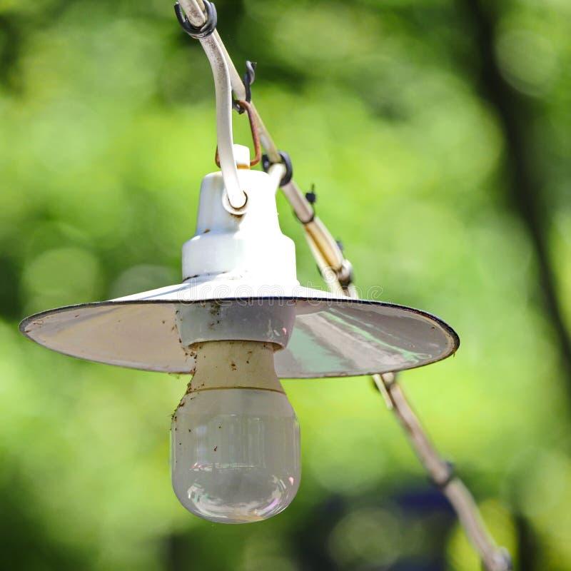 Alte Lampenbirne auf Kabel mit grünem Natur bokeh im Hintergrund stockfoto